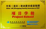 中英(重庆)职业教育质量保障项目学校